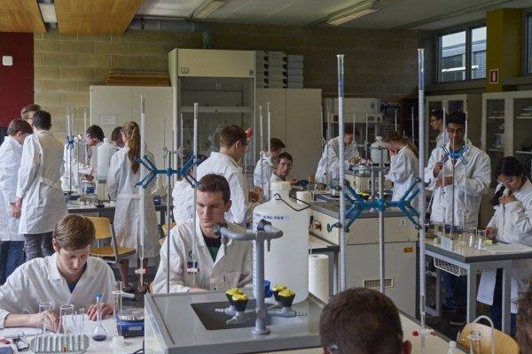 Österreichische Chemieolympiade, 2015